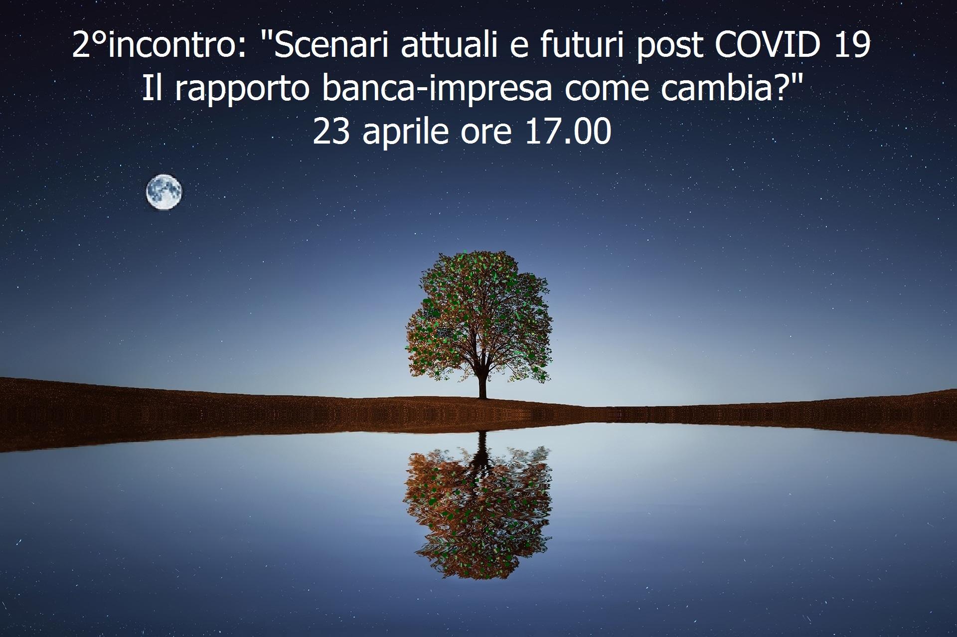 albero-2-incontro.jpg